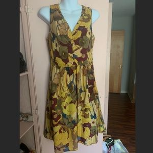 Banana Republic Carol Silk Vneck Dress